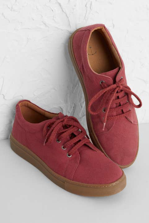 Out Of Doors Trainer Model Image