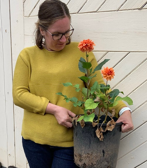 Autumn gardening tips from Jasmine Hinchliffe